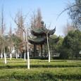 """Am 21.3.2011 ist es wieder soweit, es geht das 7te Mal nach China. Mittlerweile kenn ich mich ja schon mit den diversen Umständen in China aus und kann mich gut vorbereiten. Zudem ich dieses Mal auch eine sehr persönliche Einladung zur """"AfterWedding Party"""" bei meinem Freund Xie Changlin zuhause habe. Man sagt eine solche Einladung ist eine große Ehre die […]"""